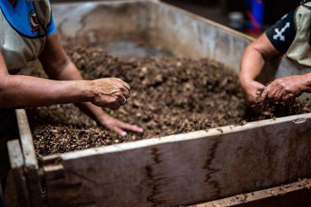 Alicante: 20 nuevos centros de compostaje impulsan la recogida selectiva en la provincia