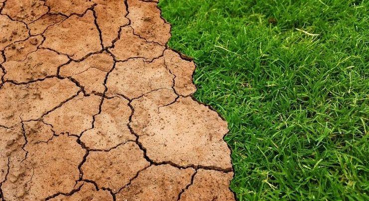 La crisis climática, un reto mucho más difícil que el COVID-19, según expertos