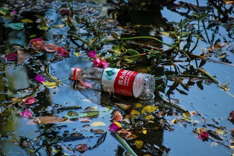 La Agencia Europea de Medio Ambiente insiste en mejorar el etiquetado de los plásticos biodegradables