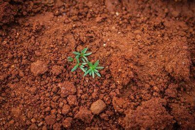 Galicia: Aprobada la ley autonómica de residuos y suelos contaminados