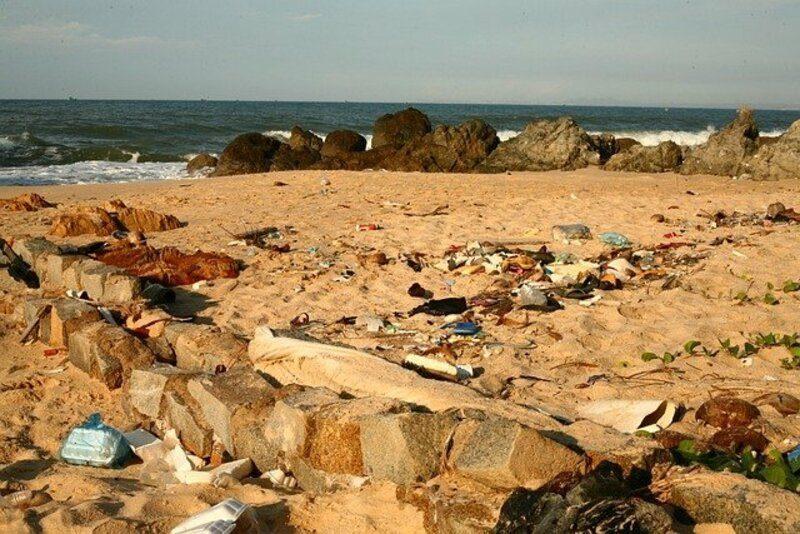 Impuestos, investigación, concienciación: ¿cuál es la mejor forma de reducir residuos plásticos?