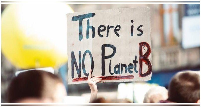 Varias iniciativas españolas despuntan para paliar la crisis climática