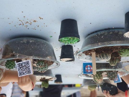 """La campaña """"Un mar de posibilidades"""" recoge más de una tonelada de RAEE y pilas usadas en Murcia"""
