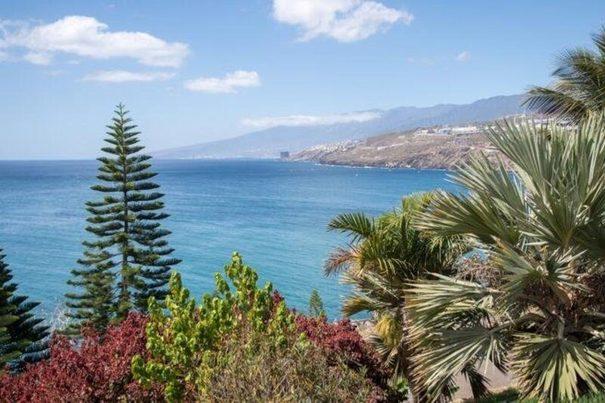 Palmetum: el oasis que transformó en parque una montaña de basura en Tenerife
