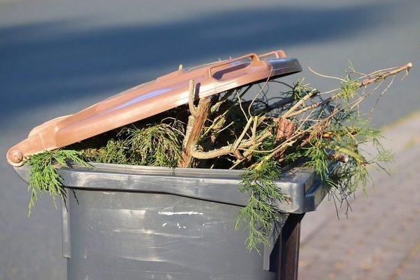 Asturias: Impulsan un proyecto piloto de recogida separada de residuos vegetales en Gijón