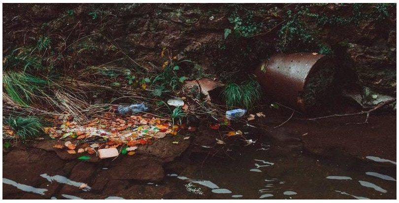 Almería: Retiradas 6.300 toneladas de residuos de cauces de ríos de la provincia