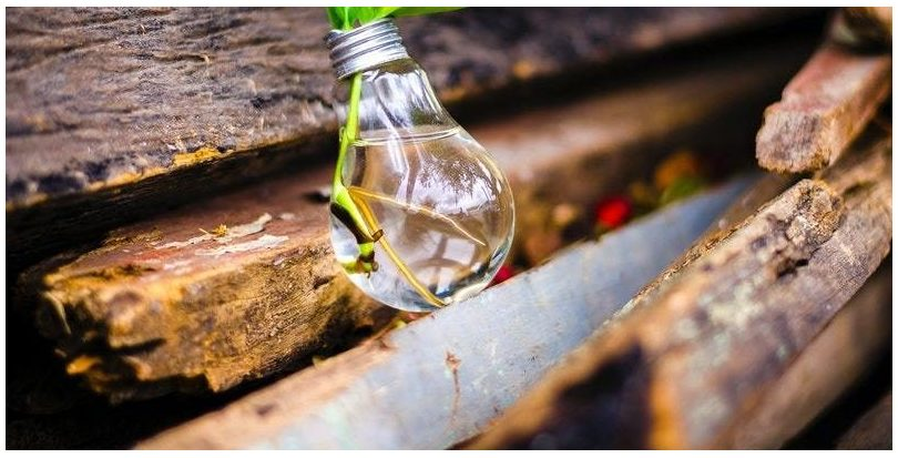"""AMBILAMP y Leroy Merlin ponen en marcha la campaña de reciclaje """"Solidarilamp"""""""