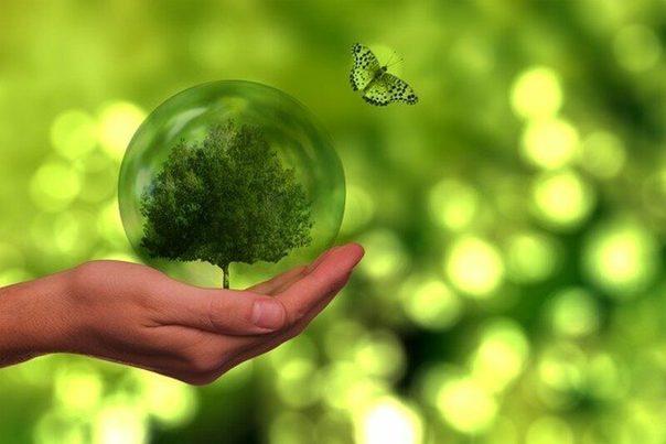 Economía circular, la clave para alcanzar los objetivos del Acuerdo de París