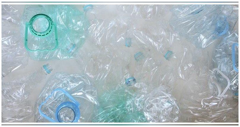 SuSPlast, biotecnología de vanguardia para abordar la contaminación por plásticos
