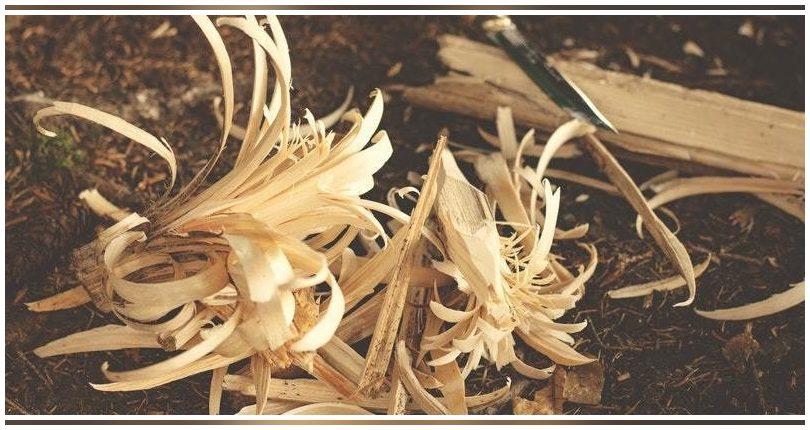Investigadores de EE.UU. logran crear bioplásticos a partir de residuos de madera