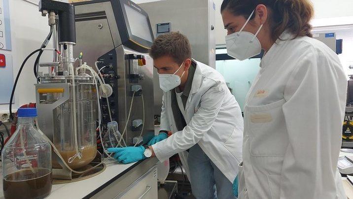 Avances en la producción de biopolímeros y biofertilizantes a partir de lodos de depuradora