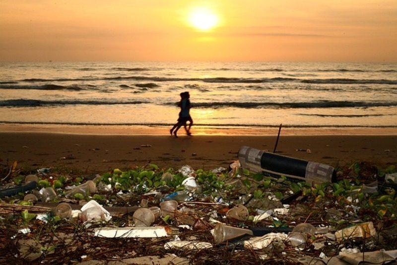 GloLitter, el proyecto mundial de la FAO contra la basura marina, suma apoyos