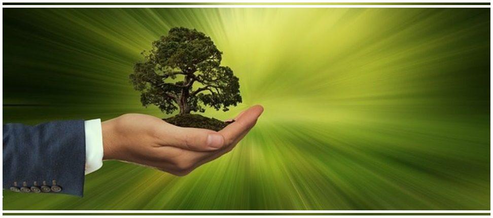 El Gobierno asigna casi 600 millones de euros a las Comunidades Autónomas para residuos y biodiversidad