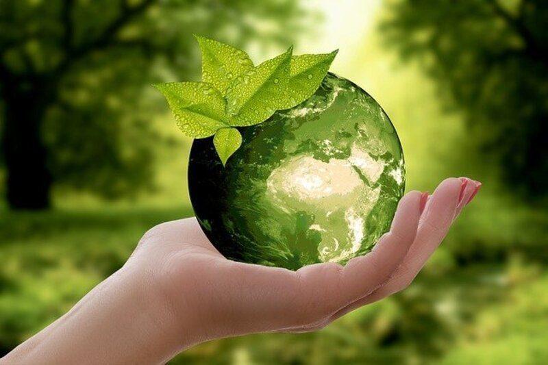 El Congreso inicia el camino para la Estrategia de Desarrollo Sostenible
