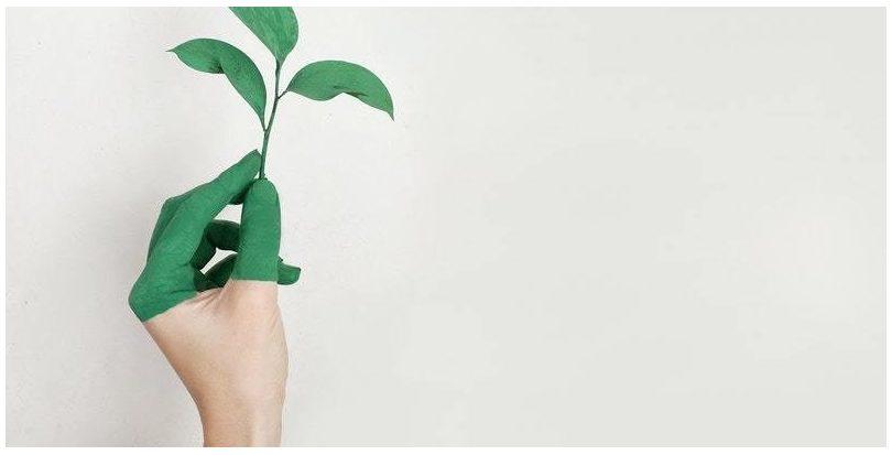 La economía circular, aliada esencial frente al cambio climático, según WCEF