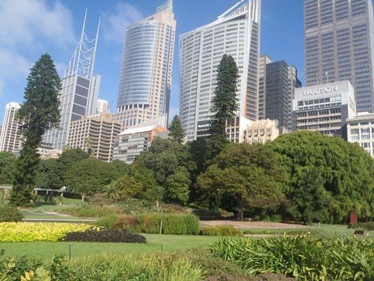 Ciudades más verdes, pieza clave para una recuperación sostenible
