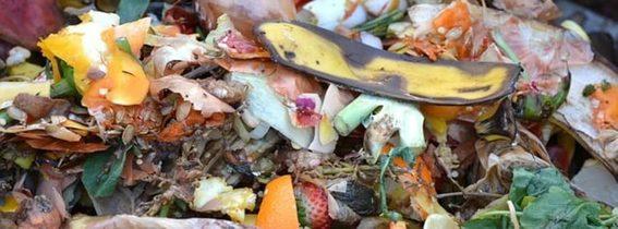 Castilla La Mancha: Comsermancha distribuirá 620 nuevos contenedores para la recogida de biorresiduos