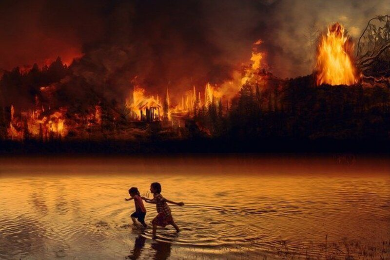 Bruselas pide reconocer como delito internacional el ecocidio o destrucción ambiental