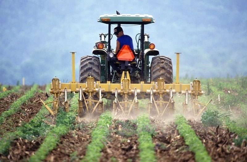 Aumenta en tres puntos porcentuales el reciclaje de envases agrarios en 2020, según datos de SIGFITO