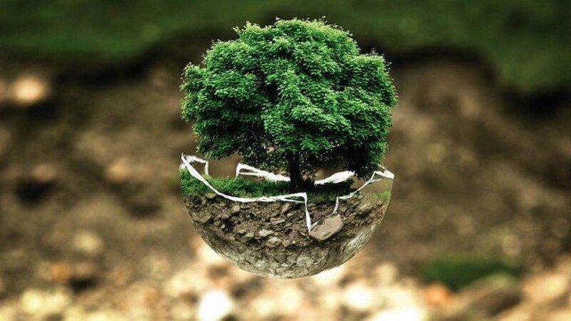 Asturias: Convocadas ayudas para fomentar la sensibilización medioambiental
