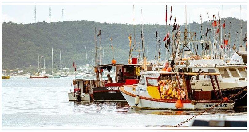 Galicia: El proyecto Clean Atlantic, buen ejemplo europeo en la lucha contra la basura marina