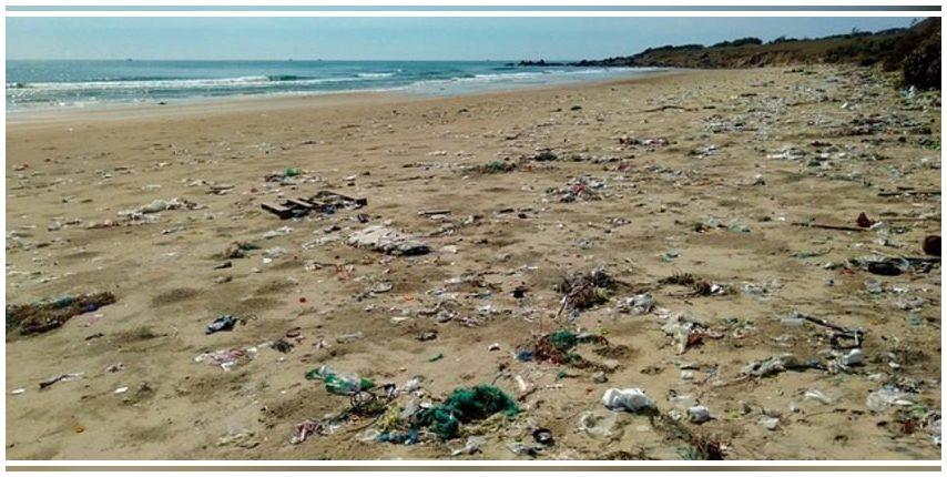 País Vasco: 250 estudiantes participan en una acción de limpieza de residuos en la playa de Zarautz