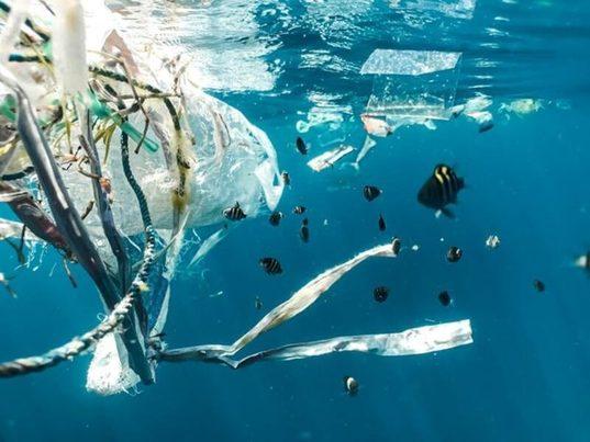 Residuos plásticos, la plaga que asola a los países insulares en todo el planeta