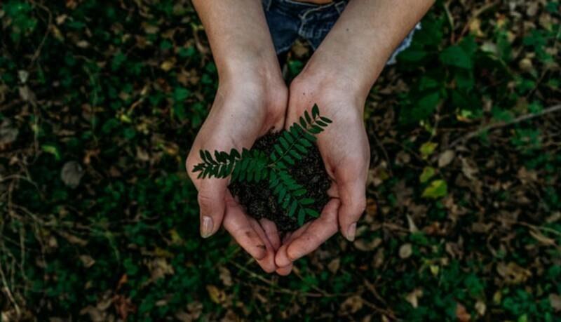 Un nuevo informe sitúa a España en el 20º puesto en desarrollo sostenible