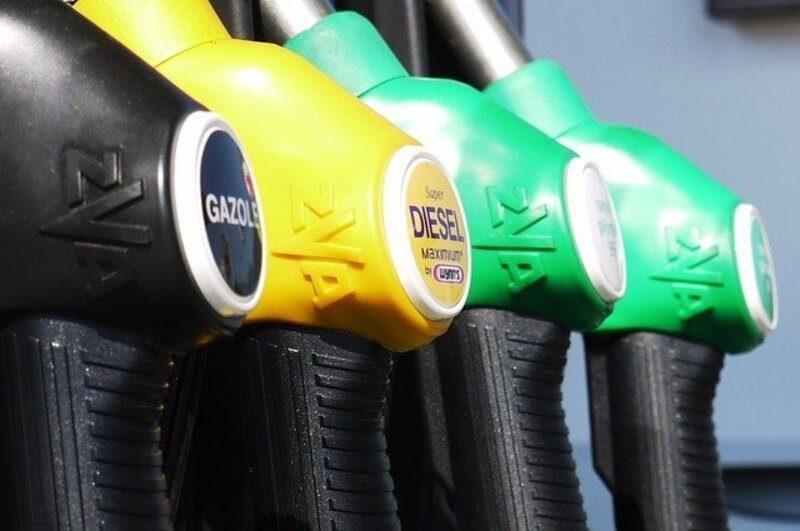 Nace una nueva plataforma para impulsar los biocombustibles en España