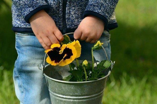 El Plan de Acción de Educación Ambiental busca acelerar la transición ecológica
