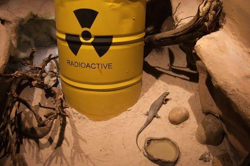 Los municipios con centrales nucleares critican la nueva política del Gobierno sobre gestión de residuos