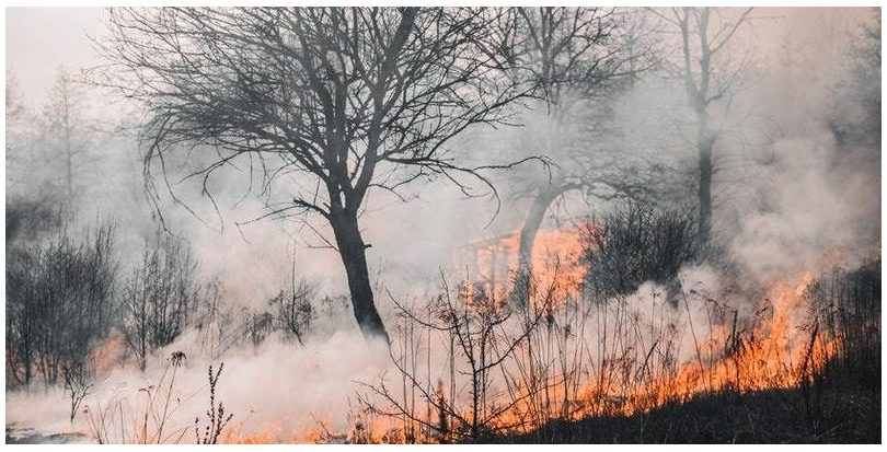 Un nuevo informe de IPCC alerta de que los efectos del cambio climático durarán milenios