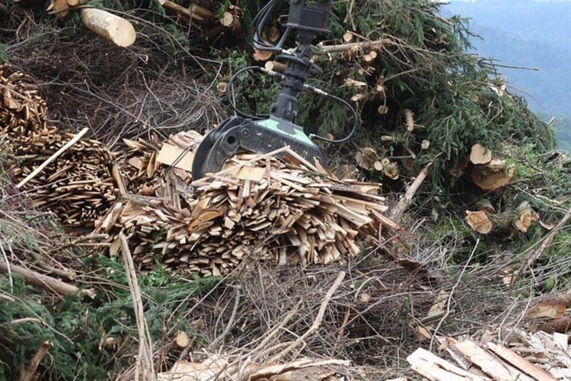 El proyecto hispano-francés BIOPLAST transforma residuos vegetales en bioplásticos