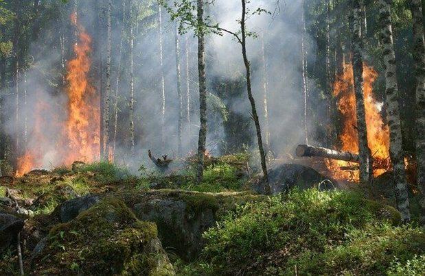 Informe del IPCC: realidad climática frente a brecha política