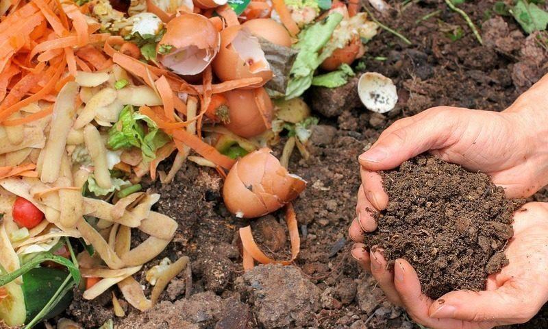 Navarra: La competición de reciclaje incrementa un 24% la recogida de materia orgánica