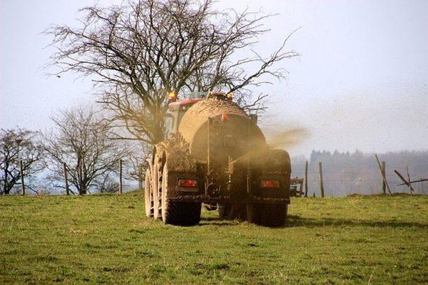 Gestión de purines y economía circular: el gran reto de la ganadería