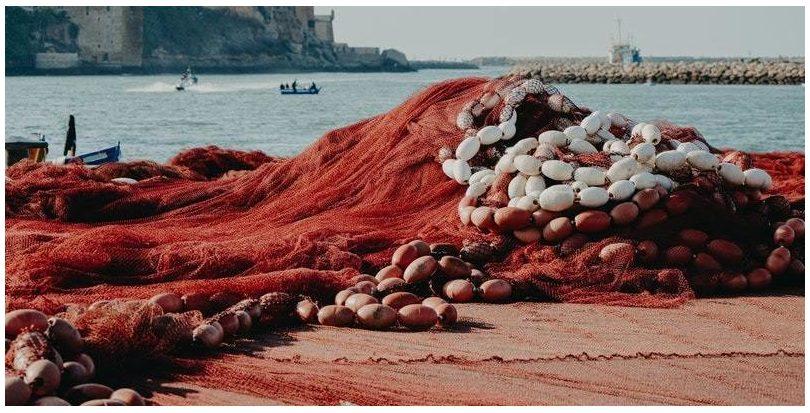 Galicia: El Puerto de Marín (Pontevedra) valorizó casi el 80% de los residuos generados en 2020