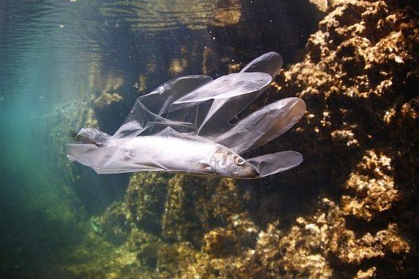 Mar de plásticos: el Mediterráneo tiene más de de 3.500 toneladas flotando en sus aguas