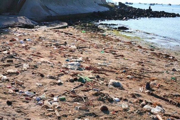 Alicante: La basura marina asedia Tabarca, la isla habitada más pequeña de España